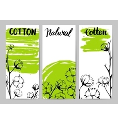 Set of template design cards with cotton vector