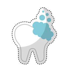 tooth clean isolated icon vector image vector image