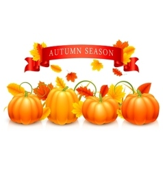 Pumpkins and autumn leaves vector