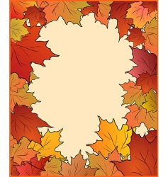 autumn card with maple vector image vector image
