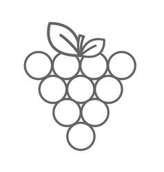 Figure grapes fruit icon image vector