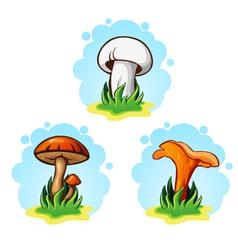 set of mushrooms vector image vector image
