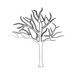 Silhouette bare oak tree icon vector