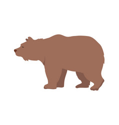 brown bear in flat design vector image vector image