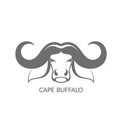 Cape buffalo vector image