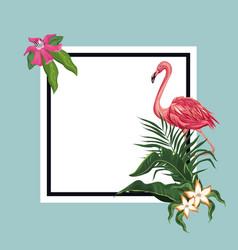 flamingo exotic tropical card template vector image