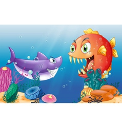 A prey and a predator under the sea vector image vector image