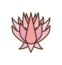 Beautiful pink lotus flower icon vector