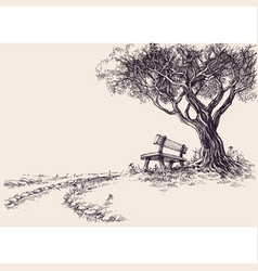 Park sketch a wooden bench under the tree vector