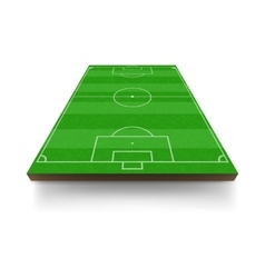 Soccer field icon cartoon style vector