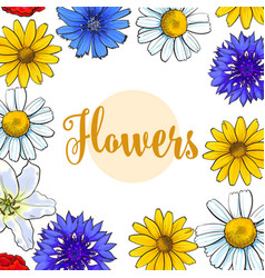 Square banner greeting card with summer flowers vector