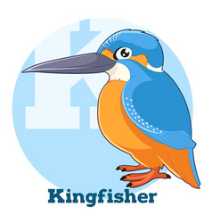 Abc cartoon kingfisher vector