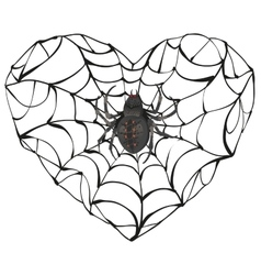 Spider wove web of heart shape heart symbol of vector