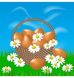 Basket with brown eggs on the grass vector