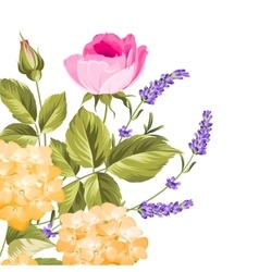 Bunch of lavender and rose flowers vector