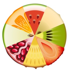Fruit diet diagram vector