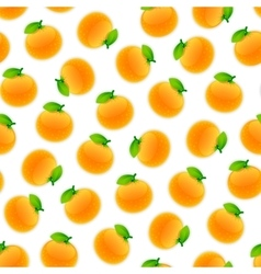 Seamless pattern with oranges vector
