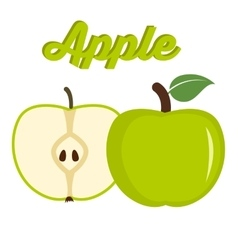 Green apple - whole and cut fruit vector