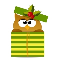 christmas owl in santa hat vector image vector image