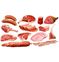 Different types of meat products vector