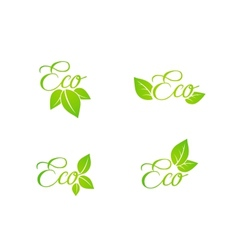 Set of green leaf eco concept icons vector image