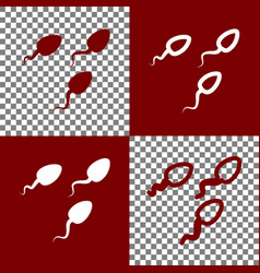sperms sign bordo and white vector image