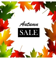 Maple leaf frame for seasonal sales vector