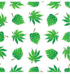 seamless pattern of tropical palm leaves vector image