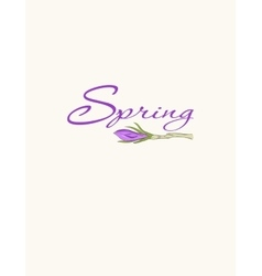 Cards with crocus spring flowers vector image