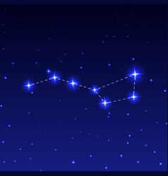 Constellation big dipper vector