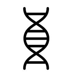 Dna molecule isolated icon vector