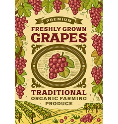 Retro grapes poster vector image vector image