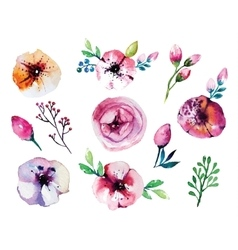 watercolor hand drawn floral set vector image vector image