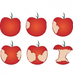 apple being eaten vector image