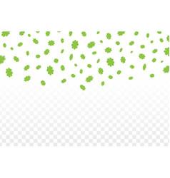 Green clover leaves vector