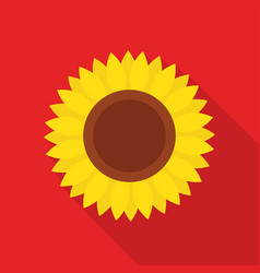 sunflower icon with long shadow vector image vector image