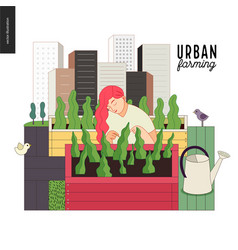 Urban farming and gardening vector