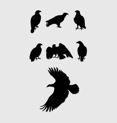 Eagles Silhouettes vector image