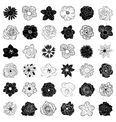 Set of hand drawn flowers abstract vector image
