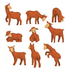Cute lamb character set funny farm animals with vector