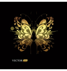 gold butterfly vector image vector image