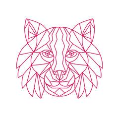 Lynx bobcat head mono line vector