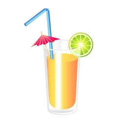 Orange cocktail vector image