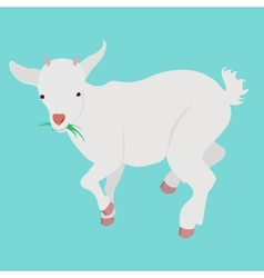 cartoon goat vector image