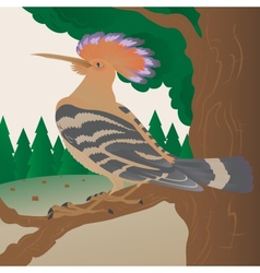 Hoopoe on a tree branch vector