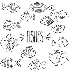 hand drawn fish outline vector image