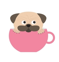 Pug dog mops paw sitting in big pink cup cute vector