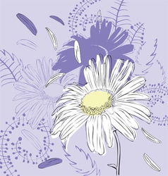 abstract background with camomile vector image