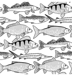 Graphic freshwater fish pattern vector