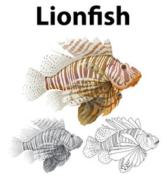 doodle character for lionfish vector image vector image